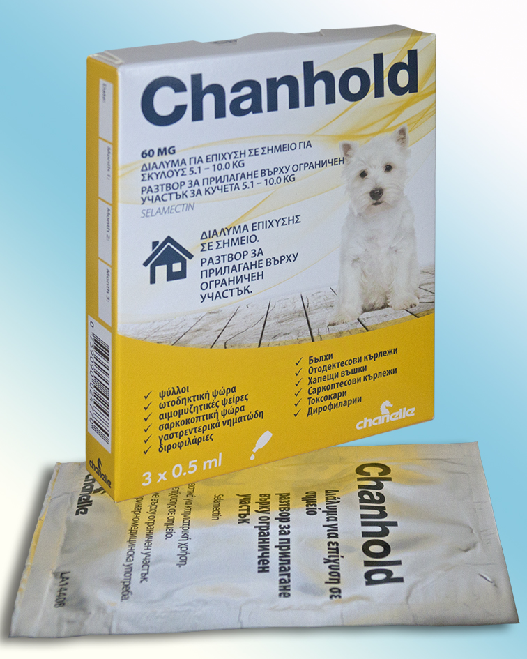 CHANHOLD DOG 5.1 - 10.0 KG